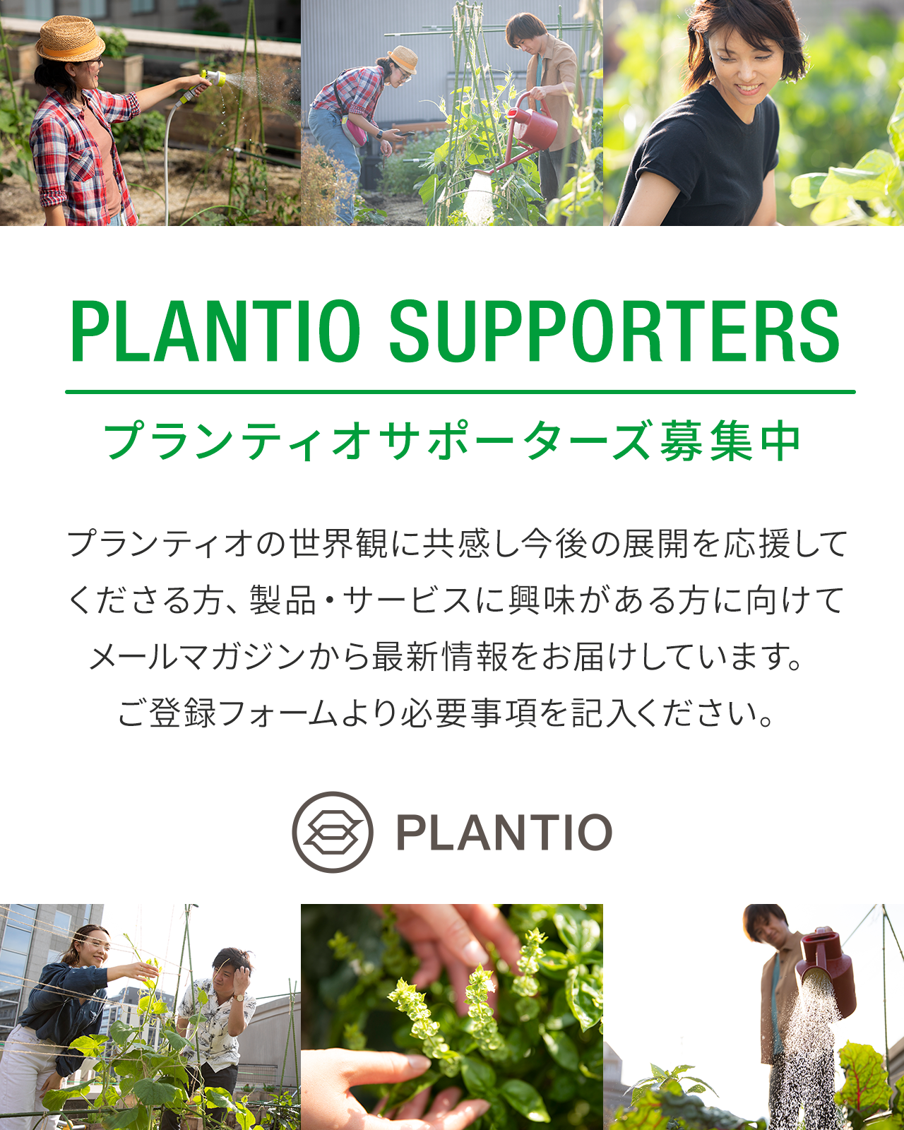 PLANTIO SUPPORtERS
